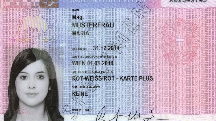 Red-White-Red Card – Work Permit Austria